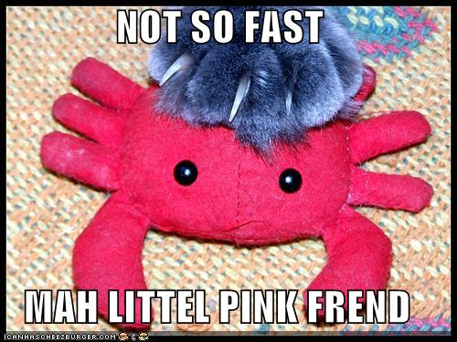 Cat sets paw on pink crab toy